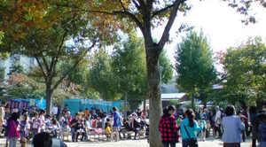 20091108autumfesta (1).JPG