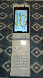 20091227p03a (1).JPG