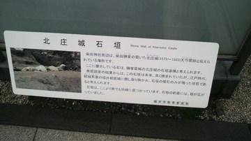 20110501shibata (2).jpg